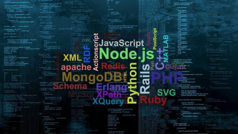 The Highest Paying Programming Languages In India